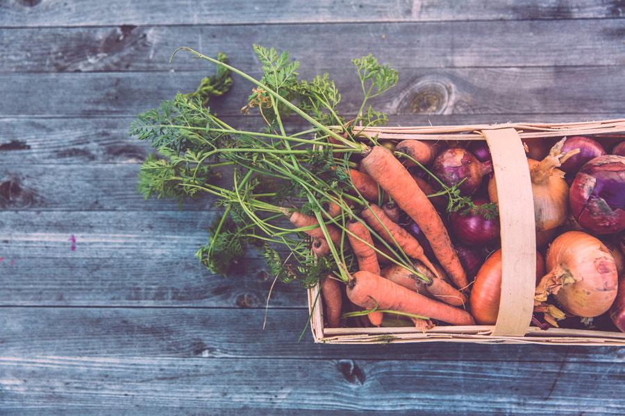legumes locaux durables slow food